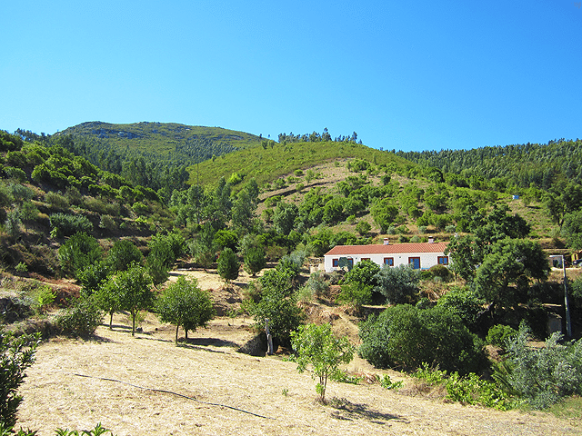 Fully_Renovated_villa_for_sale_near_Monchique_Foia_Portugal_large