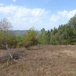 Monchique Real Estate plot for sale