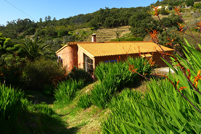 Real Estate for sale Monchique Portugal