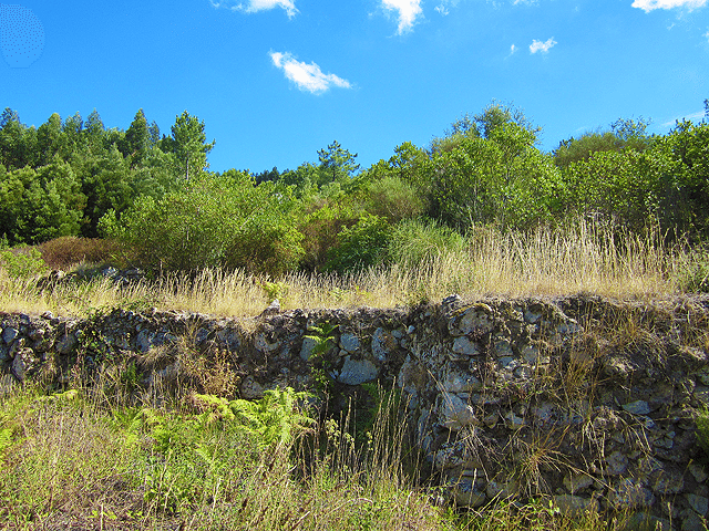 Two_Half_hectare_plots_with_ruin_for_sale_near_Monchique_Algarve_Portugal_large