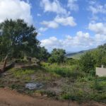 Land Monchique for sale