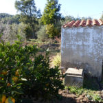 Monchique property for sale