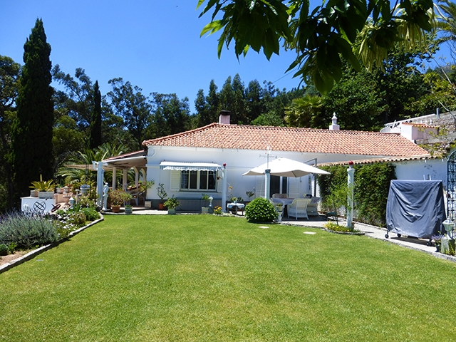 Algarve property for sale villa with pool Monchique