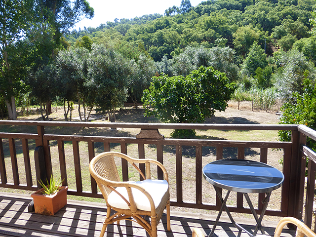 Countryhouse near Monchique for sale
