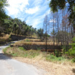 Monchique Portugal land with ruin for sale