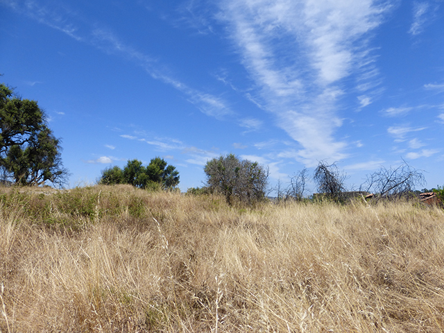 Property Monchique for sale land with ruin