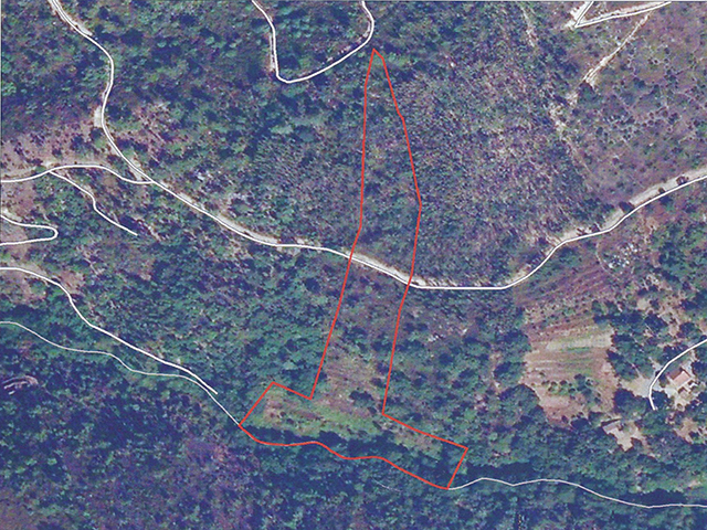 Terrain Monchique Portugal for sale