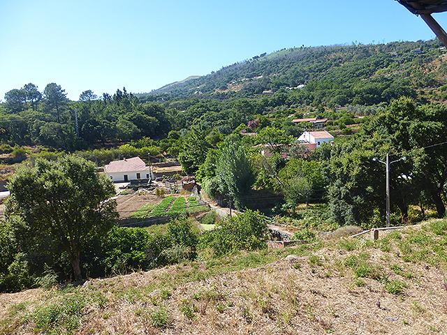 Real Estate Monchique Imochique Imobiliaria